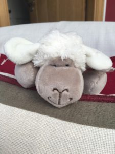 Buy a woolly lamb to support a bereaved child